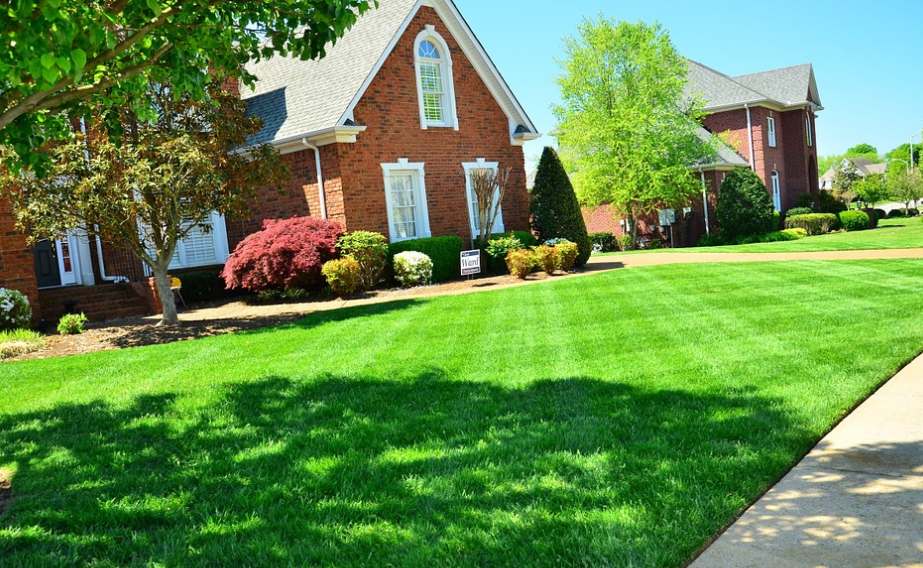lawn care southbury